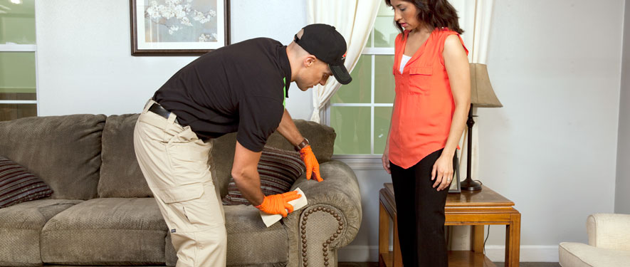 Delray Beach, FL carpet upholstery cleaning